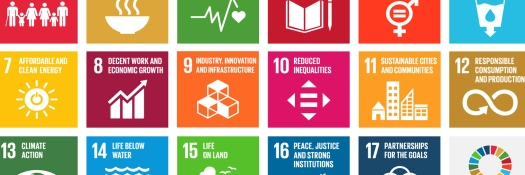 the-global-goals-grid-color-cropped